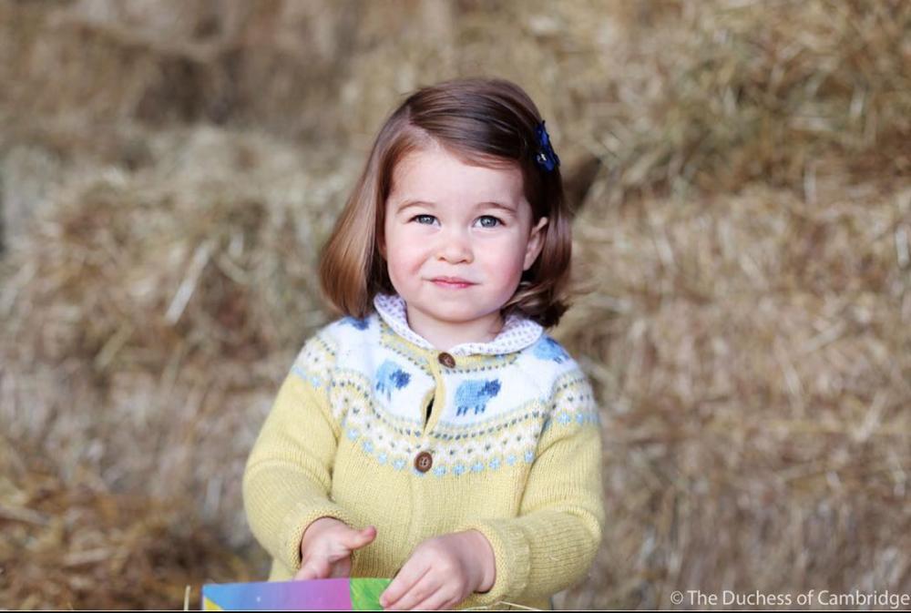 Prince-charlotte-yellow-sweater
