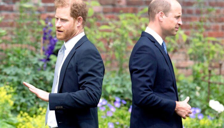 Royal News-Prince Harry and Prince William -1